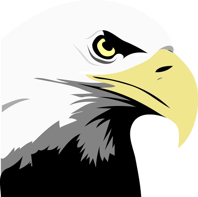 eagle-24600_640